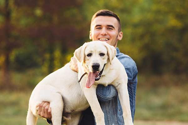 canine-veterinarians-ilsip-ny-1